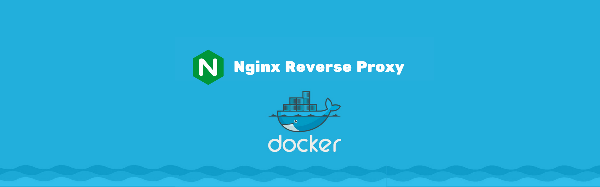 How to use Nginx as reverse proxy with Docker